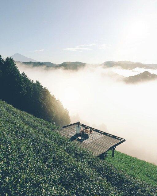富士山と雲海を望む茶畑でティータイムを楽しめる「天空の茶の間」