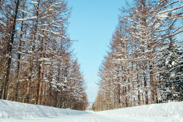 雪、空、山。冬の美しさを詰め込んだ上川町を、カメラ片手にめぐろう