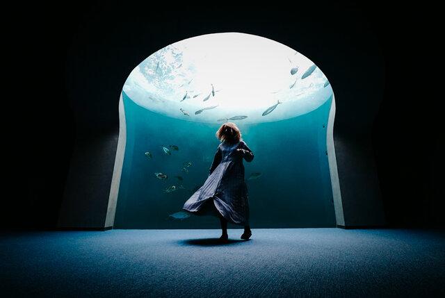 四国の次世代水族館「四国水族館」で美しき水中世界を楽しむ