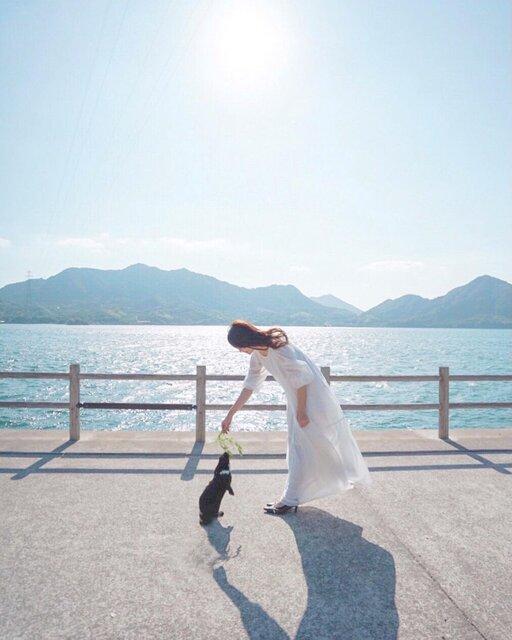 癒しを求めて「うさぎ島」へ。たくさんのうさぎと触れ合うのんびり旅