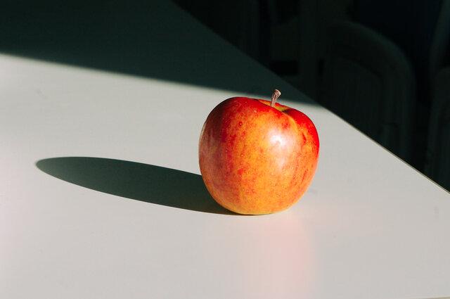 誰の目も届かないリンゴの色/ぽんずのみちくさ Vol.66