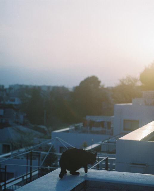 【写真家が撮る日常:2 】東海林広太