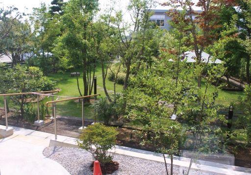大きな窓から眼前に広がる「 あゆみ公園」。四季折々の草木が彩やか