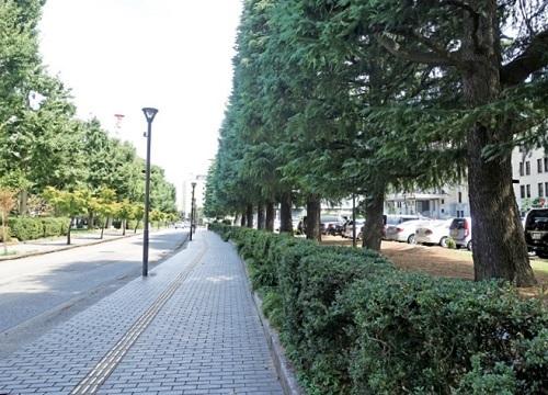 右は富山県庁