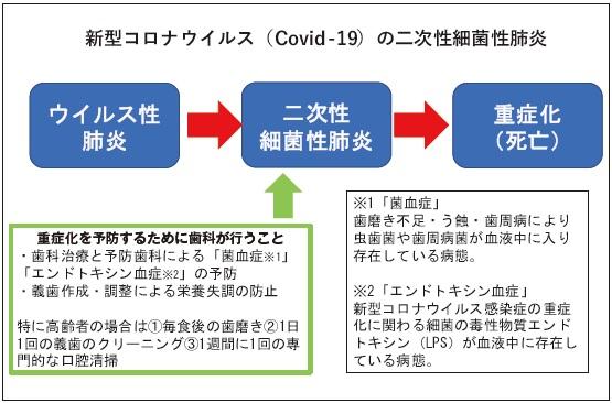 ストーム コロナ ウイルス サイトカイン COVID