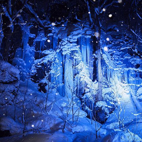 冬の夜の絶景に出合う「氷瀑ライトアップツアー」 TRAVEL