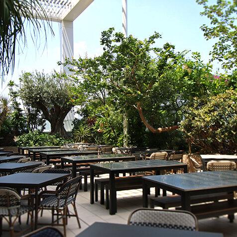 空と植物とエキゾチックな料理を楽しむビアテラス|SHIRONONIWA