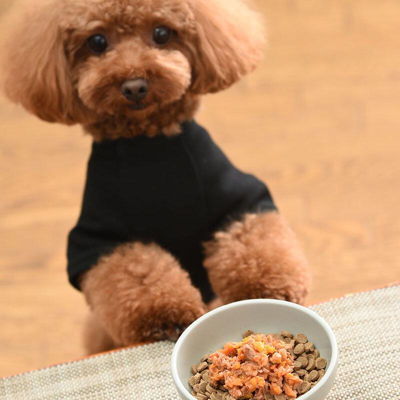 犬にも人にも環境にも優しいドッグフード。「Foodie Dogs Tokyo」 |FOODIE DOGS TOKYO