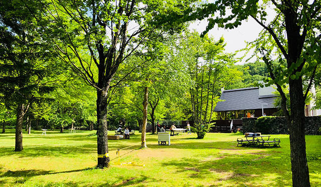 Jazztronikや柴咲コウが出演。北海道美瑛町で野外イベント「Grand Viewty」開催|MUSIC