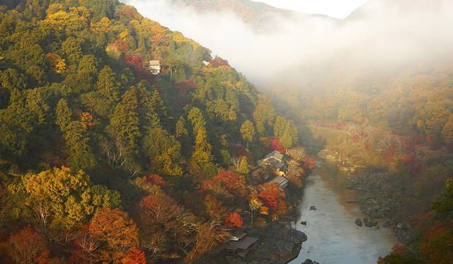 1日1組限定、紅葉に彩られた京都の街を巡る「紅葉ヘリクルーズ」|HOSHINOYA Kyoto