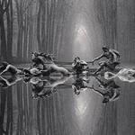 代表作から初公開作品を展示。「マイケル・ケンナ写真展 A 45 YEAR ODYSSEY 1973-2018」|LOUNGE