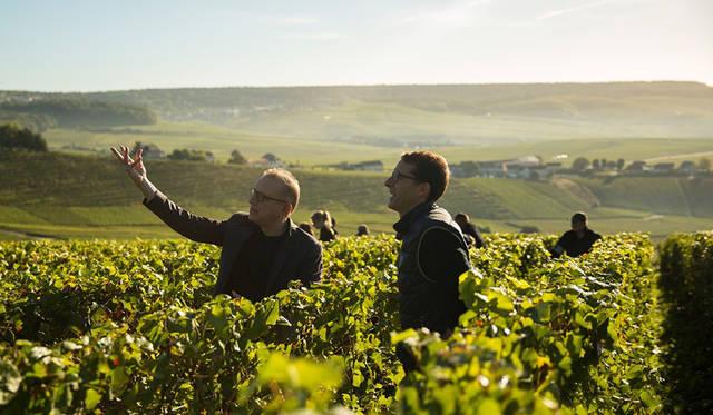 ドン ペリニヨン醸造最高責任者の「レガシーの継承」を発表|Dom Pérignon