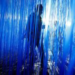エスパス ルイ・ヴィトン東京でヘスス・ラファエル・ソト「Pénétrable BBL Bleu」展|ART