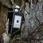【1/11発売】ジョー マローン ロンドンから新しい香りが登場|JO MALONE LONDON