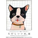 深澤直人デザインの犬鑑札ついに展示発表