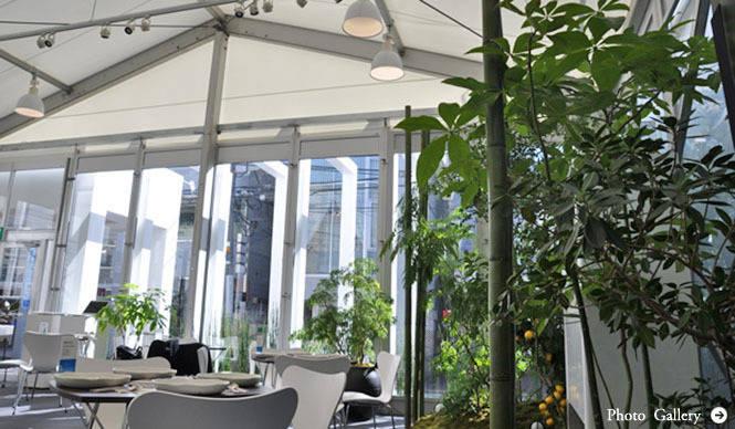 塚田有一│みどりの触知学 第6回:BMW Studio ONE=温室について