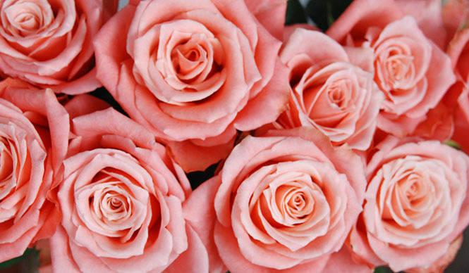 和気雅美|ホワイトデイに、花を贈る