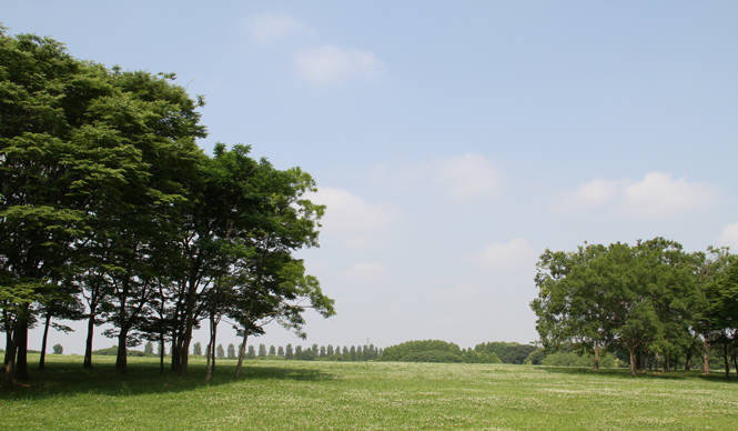 松浦俊夫 思わず身体も軽くなる、美しい季節を楽しもう!