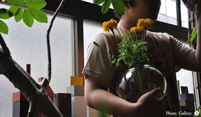 連載・塚田有一│みどりの触知学 第13回 「リムグリーン」リスタート