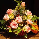 連載・和気雅美 ハロウィンの季節のオレンジ色の花
