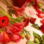 連載・和気雅美 「ショコラ色のフラワー」バレンタイン2012