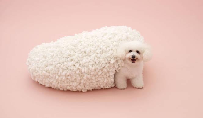 TOTOギャラリー・間|『犬のための建築展』いよいよ国内で開催!