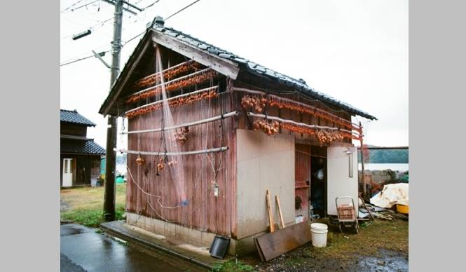 ART|金沢21世紀美術館『島袋道浩:能登』