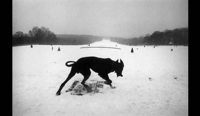 ART|東京国立近代美術館で『ジョセフ・クーデルカ展』