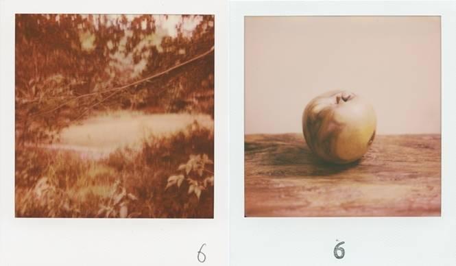 ART 6人の写真家が競演する写真展『solo six』