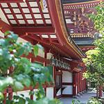 EVENT|ニコライ・バーグマン、太宰府天満宮にて展示会開催