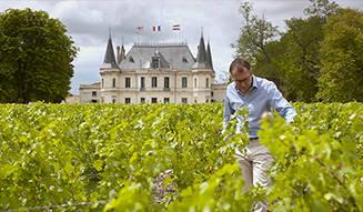 MOVIE|知られざるワインビジネスの実態に迫る『世界一美しいボルドーの秘密』