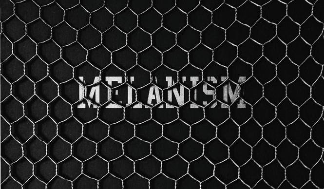 黒色に染まる「MELANISM」開催|the POOL aoyama