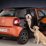 犬との旅行に便利な新型スマート フォーフォー|smart