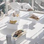 エスパス ルイ・ヴィトン東京がひとつのインスタレーション空間に|ESPACE LOUIS VUITTON TOKYO