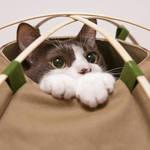 PRODUCT Tokyo Tips|2015年10月 新製品情報を厳選して紹介