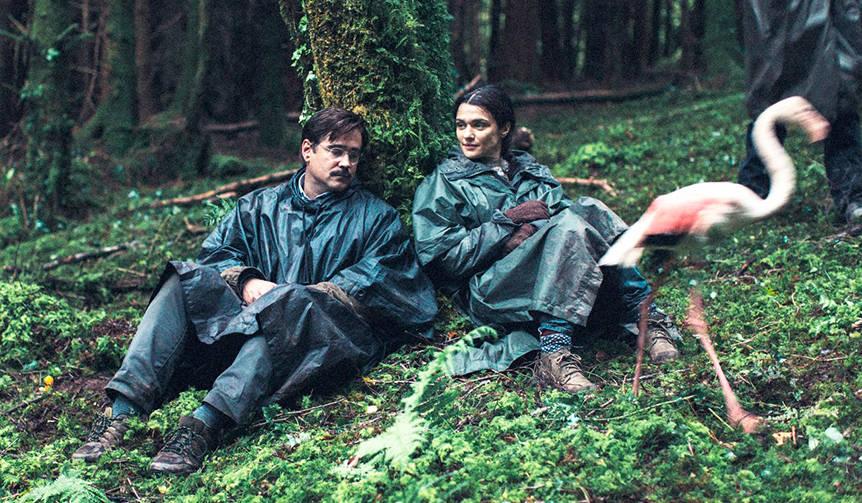 独身者は身柄を確保され動物に。映画『ロブスター』が公開|MOVIE
