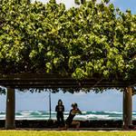 連載|麗子の部屋♥︎ 第5回 「ハワイの新しい過ごし方」(後編)