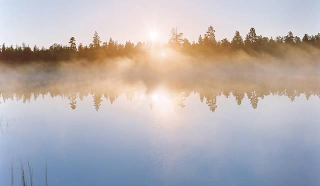 MOIMOIモイモイ それは、フィンランドの挨拶で「やあ!」|ART