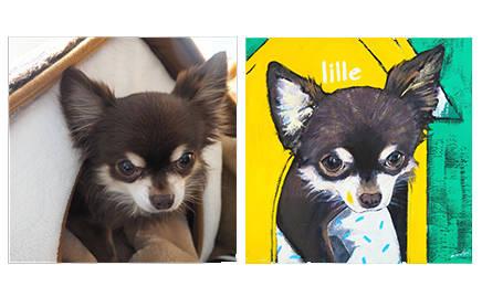 愛するペットの肖像をポップなアートにしてみませんか?|ART