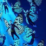 カムカムミニキーナ公演『蝶つがい』|THEATER