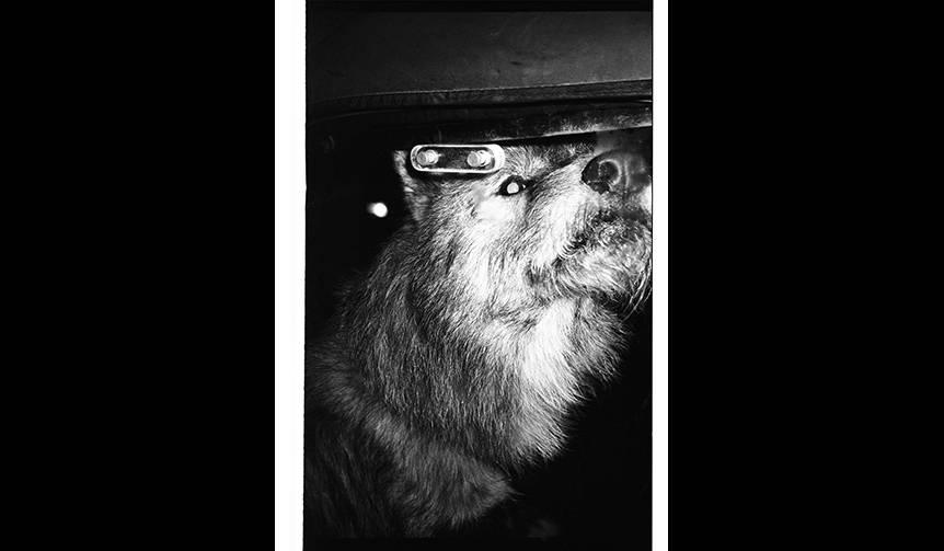 90年代のクラブシーンを収めた写真集「90 Nights」|LOUNGE