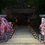 僧侶によるガイドで寺院と遺構を巡る「古絵図で巡る高野山探訪」|TRAVEL