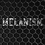 黒色に染まる「MELANISM」開催|the POOL aoyama ギャラリー