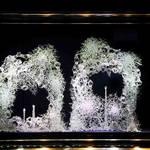 ヴァン クリーフ&アーペル 全店舗でブライダルフェア開催|VAN CLEEF & ARPELS ギャラリー