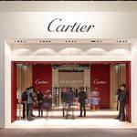 カルティエの芸術的なレアピース|CARTIER ギャラリー