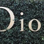 ディオール 2017年春夏オートクチュールコレクション|Dior