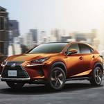 レクサスNX、安全装備が進化|Lexus ギャラリー