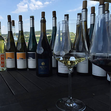 ワイン雑誌 WINE WHAT によるワインセミナー開催|LOUNGE ギャラリー