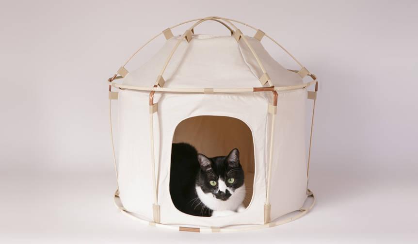 大きな話題を呼んだネコ用テントがジャイアントサイズになって登場|41世紀