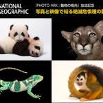 二子玉川ライズにて「写真と映像で知る絶滅危惧種の動物展」開催中|EVENT